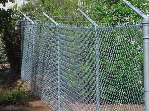 Fencing Coyote Coexistence
